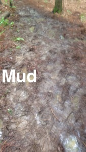 After a week of rain, there was plenty of mud! Adds to the fun!