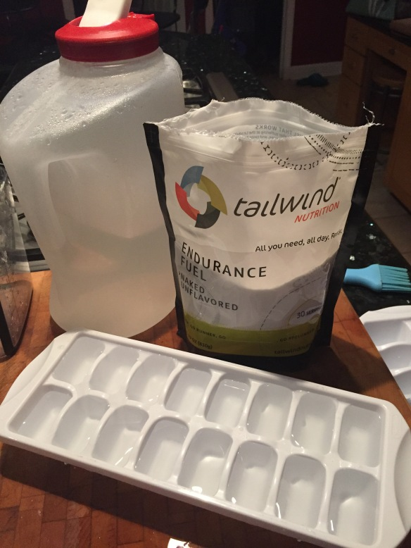 My tailwind hack- Making Tailwind ice cubs for my hydration pack prevented watered down nutrition. This proved to be very beneficial and easy to do!